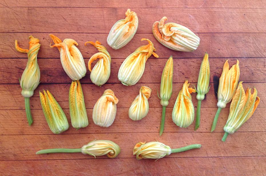 Stuffed Zucchini Flowers Recipe - Nutrition You Can Trust