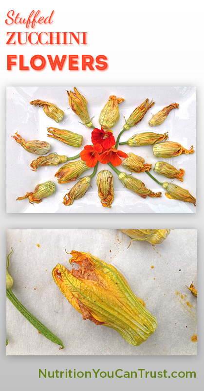 Stuffed Zucchini Flowers Recipe - Nutrition You Can Trust