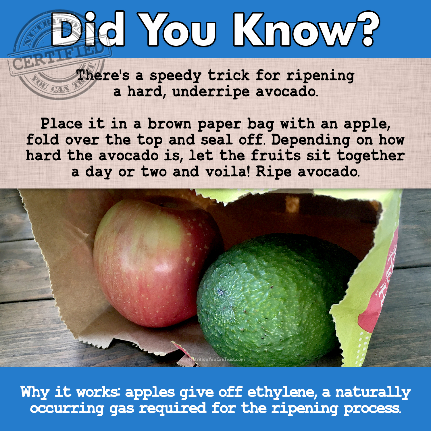 Did You Know Avocado Apple Ethylene Ripening Food Waste